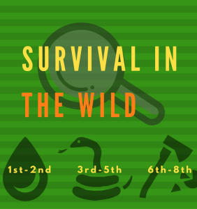 survival-in-the-wild