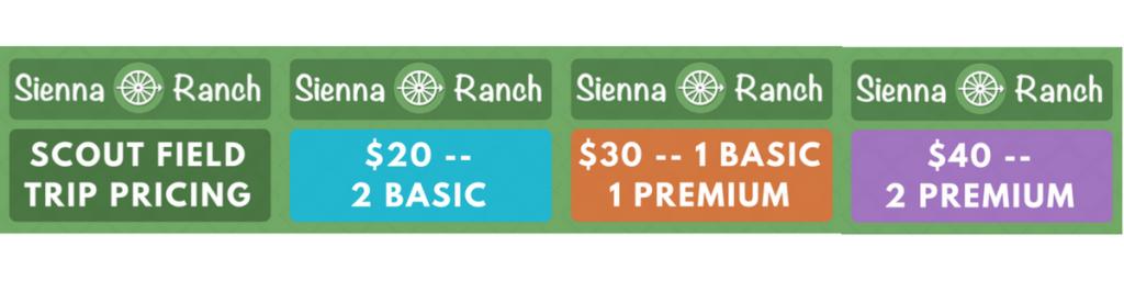 Scout Field Trip Pricing