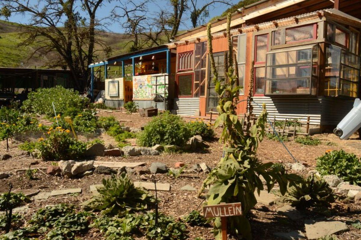 Our Educational Garden
