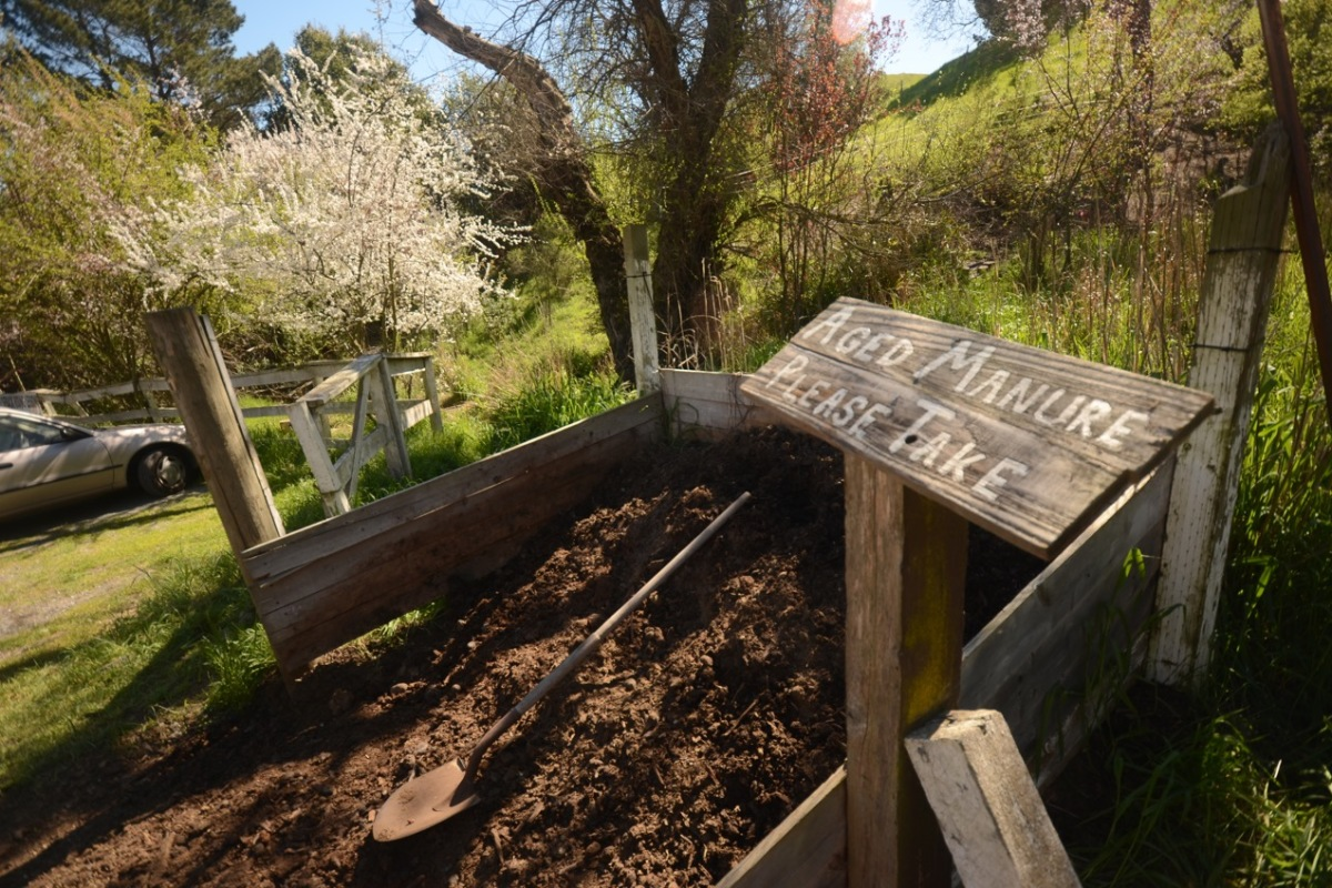 Aged Manure–Free to a good home!