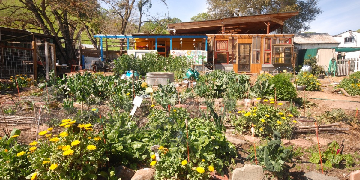 Educational Garden
