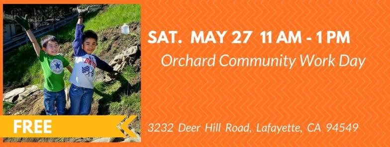 orchard-may-2017