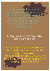 MUD-FACTS-FINAL-REPLACEMENT-2