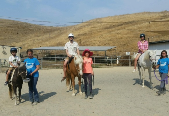 Pony / Horse Rides in the Round Pen