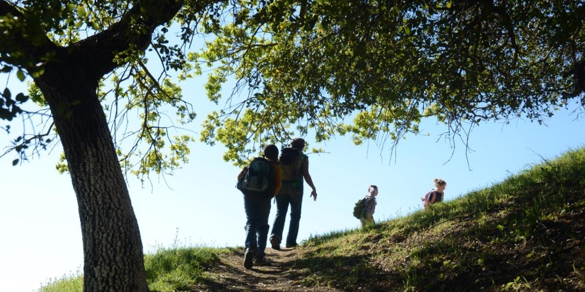 Trail Exploration