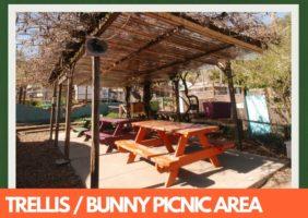 Trellis / Bunny Picnic Area