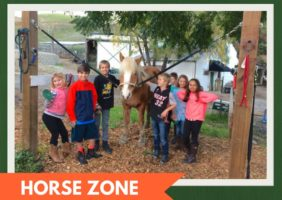 Horse Zone